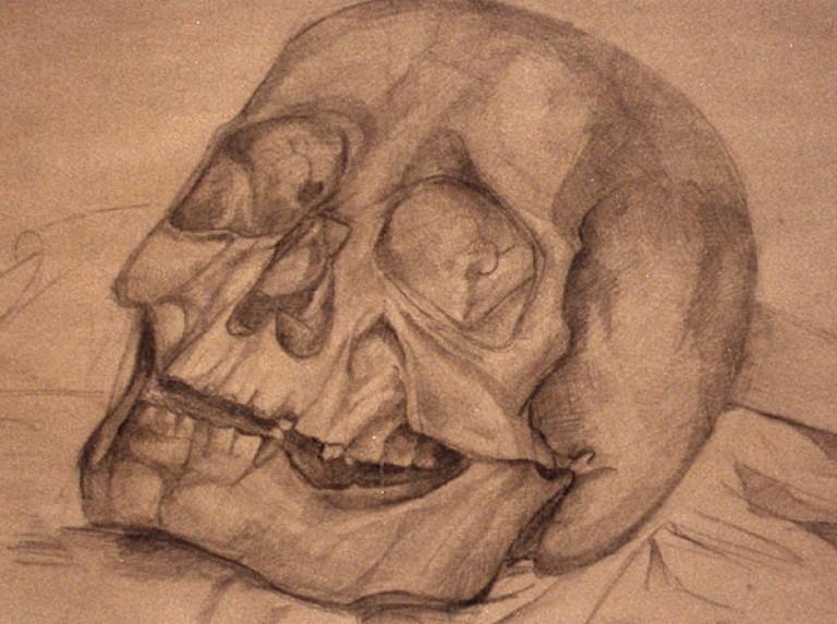 skelet (1)