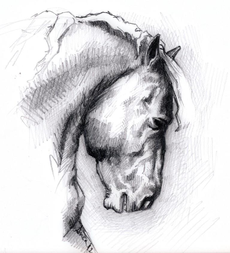 Pferd_01